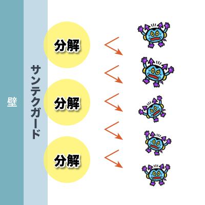 サンテクガード®︎の抗ウイルスの仕組み③